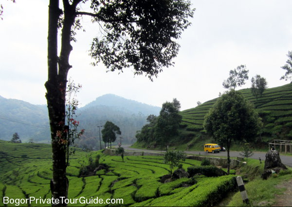 Places To Visit In Bandung Submited Images
